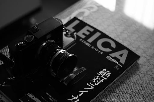 DSC00803.jpg