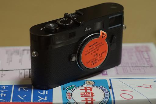 DSC06461.jpg