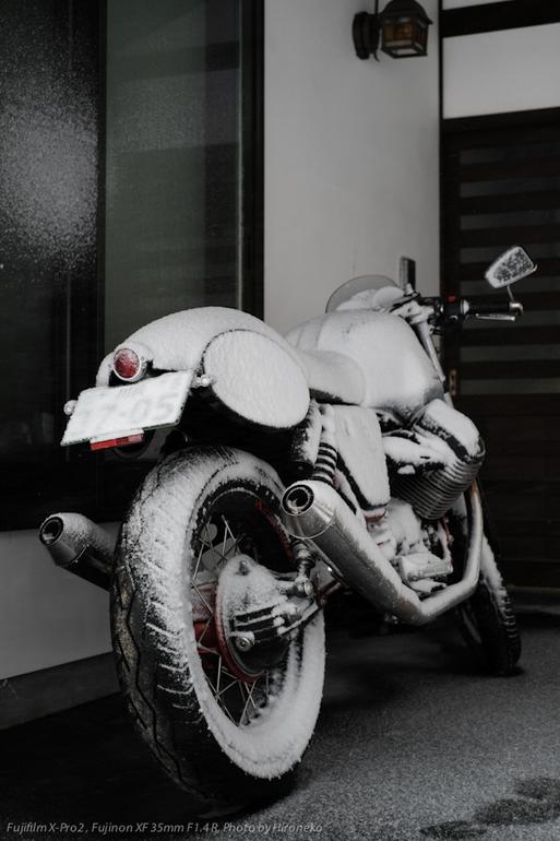 XPRO4311.jpg